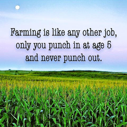 Farming is like any other job only you punch in at age 5 and never punch out.